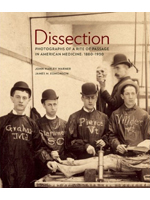 Dissection 3