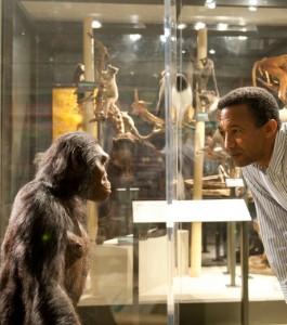 Yohannes face-a-face-entre-l-australopitheque-lucy-et-le-dr-yohannes-haile-selassie-anthropologue-du-museum-de-cleveland_62748_w460