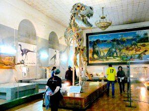 mongolian_museum-credit-sergio-conti-crop