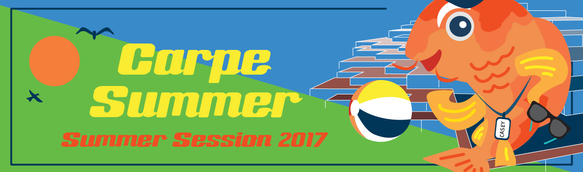 summersession_banners_2017_1-1