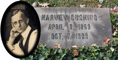 Harvey marker