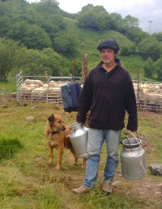 dEstaing sheep 2014-06-18 18.16.59 crop pails