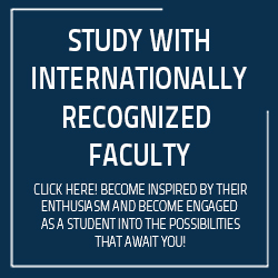 Study with internationally recognized faculty