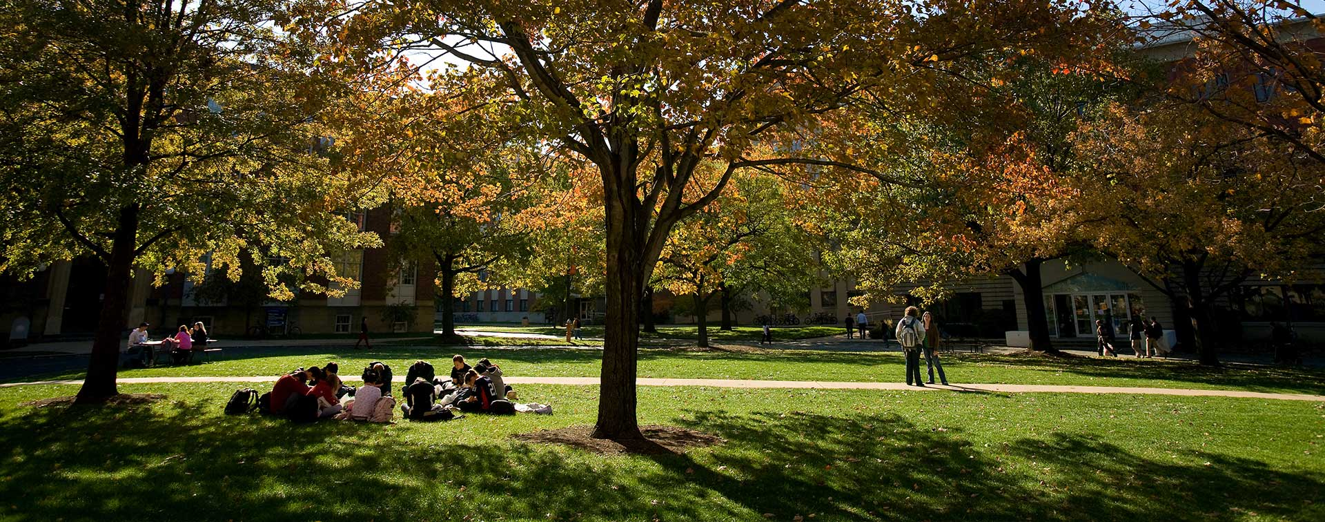 Photo of students studying on the lawn