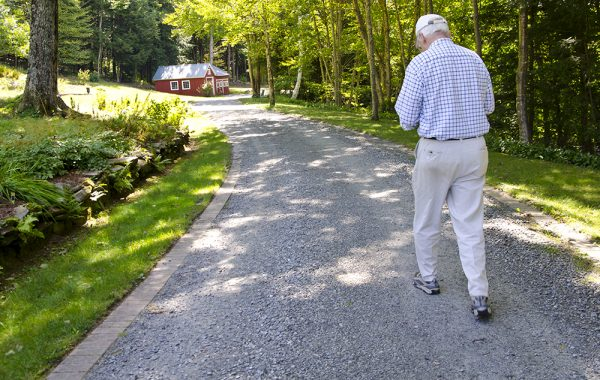 The Ryans now live in Grafton, Vermont, a town nestled among three state forests. On a Tuesday in early September, Frank Ryan set out on a stroll to pick grapes. Photo by Nancy Nutile-McMenemy.