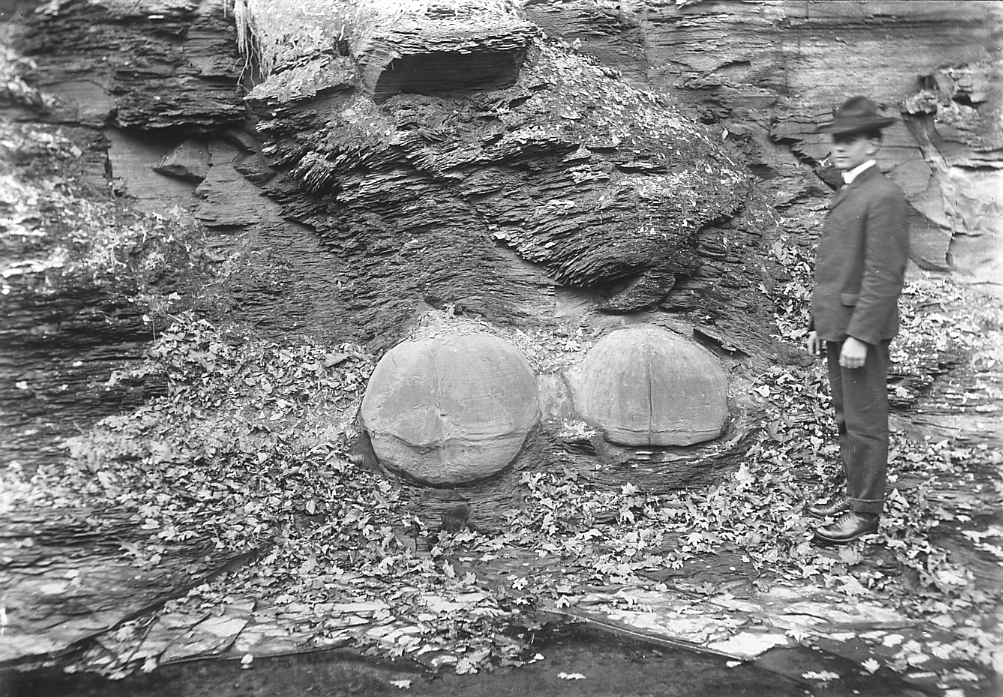 Ohio Geology Hyde Collection