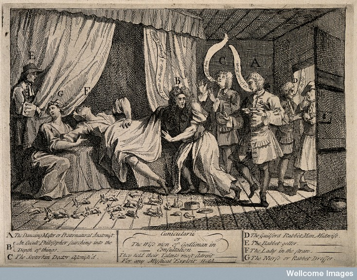 Wellcome Image: Toft