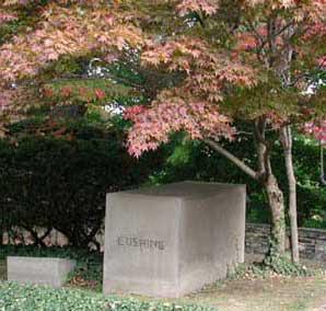 Cushing marker