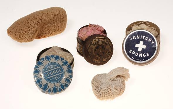 various-sponges
