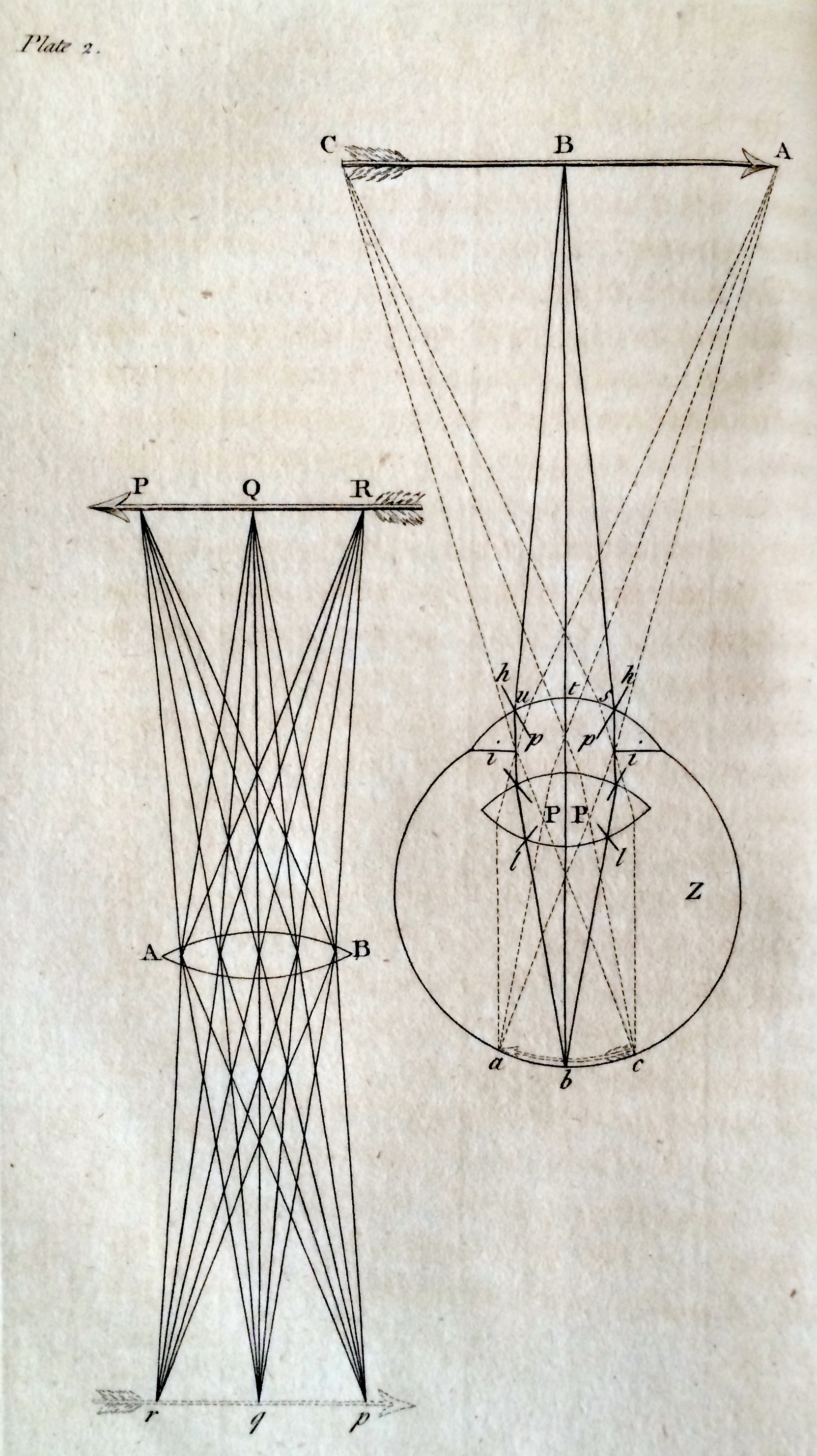 The Eye As Art Anatomy And Vision In The 18th Century Dittrick