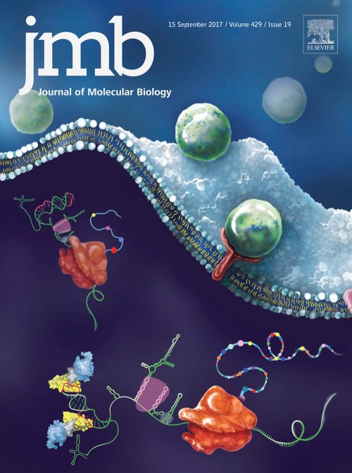 cover illustration for Journal of Molecular Biology Volume 429 Issue 19